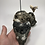 "Thumbnail: 5.64"" XXL Fossil Megalodon & Chubutensis Shark Tooth Combo  ** On Whale Bone"