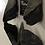 Thumbnail: Fossil Megalodon Shark Tooth Split Refrigerator Magnet Ocean Teeth