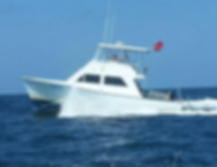 Scuba Diving Charter for Megalodon Shark Teeth