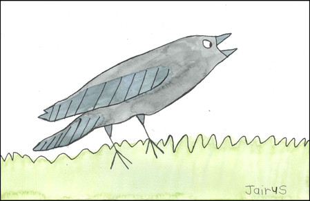 A Cawing Crow