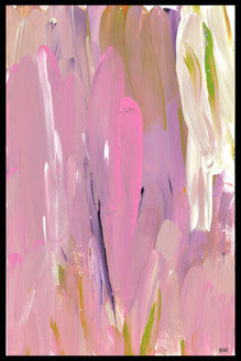 Pink Splendour