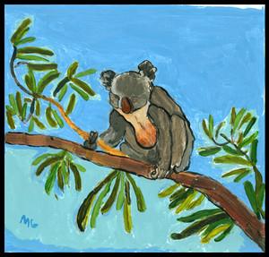 Koala 2019