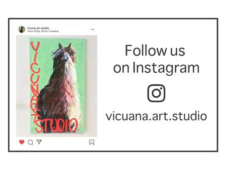 Visit Vicuna on Instagram!