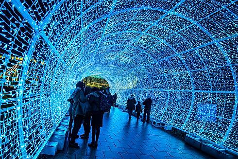 Norwich Tunnel of Lights.jpg