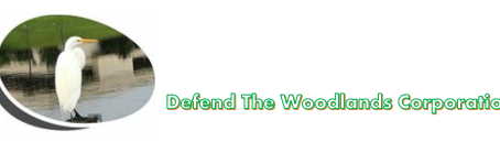 Response to 13th Floor Homes Letter to The Woodlands