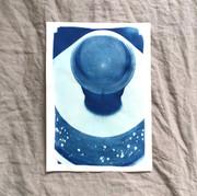 cyanotype 17