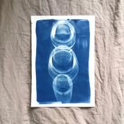 cyanotype 15