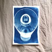 cyanotype 16