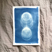 cyanotype 19