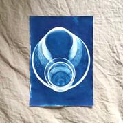 cyanotype 21