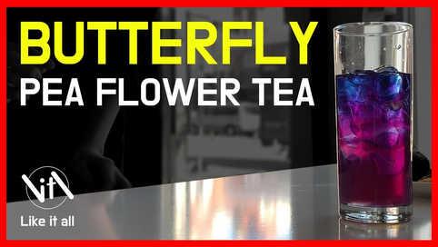 신비한 마법의 Tea! butterfly pea flower