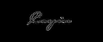Cayin-Audio-Transparent.png