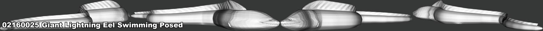 02160025 Giant Lightning Eel Swimming Po