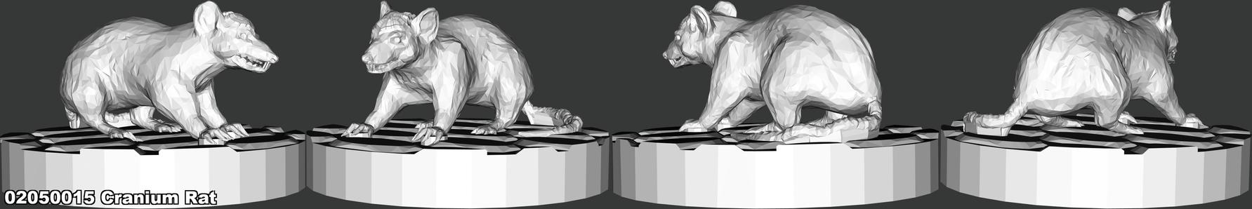 02050015 Cranium Rat.png
