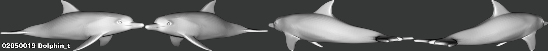 02050019 Dolphin_t.png