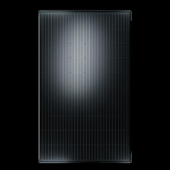 Solarwatt Eco 60 M style 320Wp