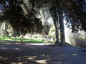 Un paseo por el parque y la cultura de l