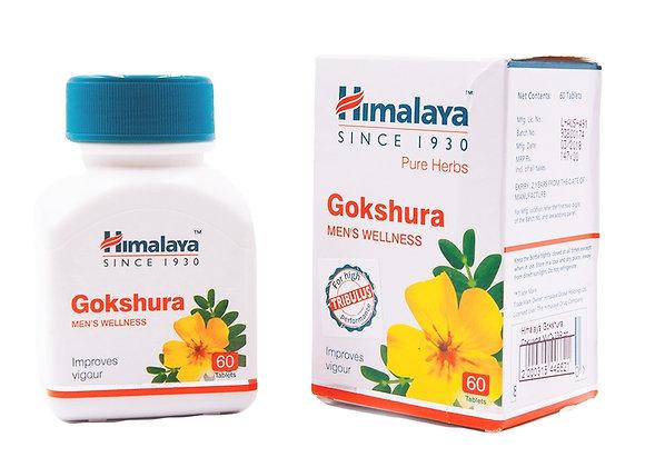 Gokshura Himalaya