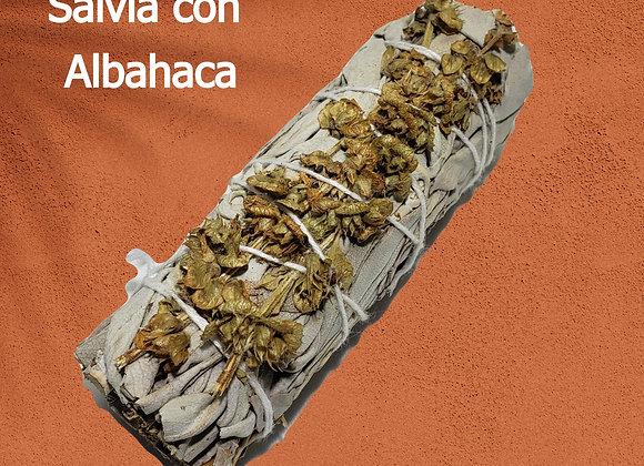 Salvia con Albahaca