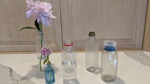 Flower Show Guru DeLaine Tells Us HOW!