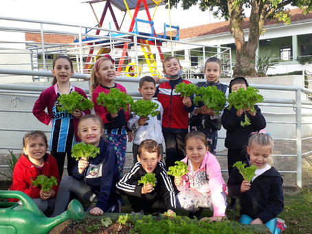 Alunos de Santa Clara do Sul cultivam saúde através de hortas escolares