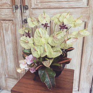 Flower Vase Gift