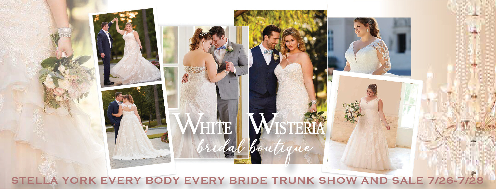Stella York Every Body Every Bride Plus Size Trunk Show And Sale