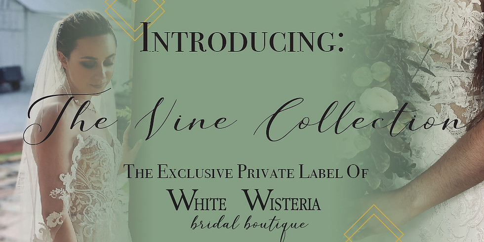 Launch of our Exclusive Private Label: The Vine Collection