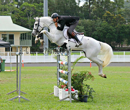 Sandon jumping.jpg