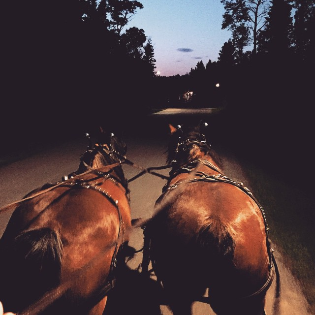 Private Hayride