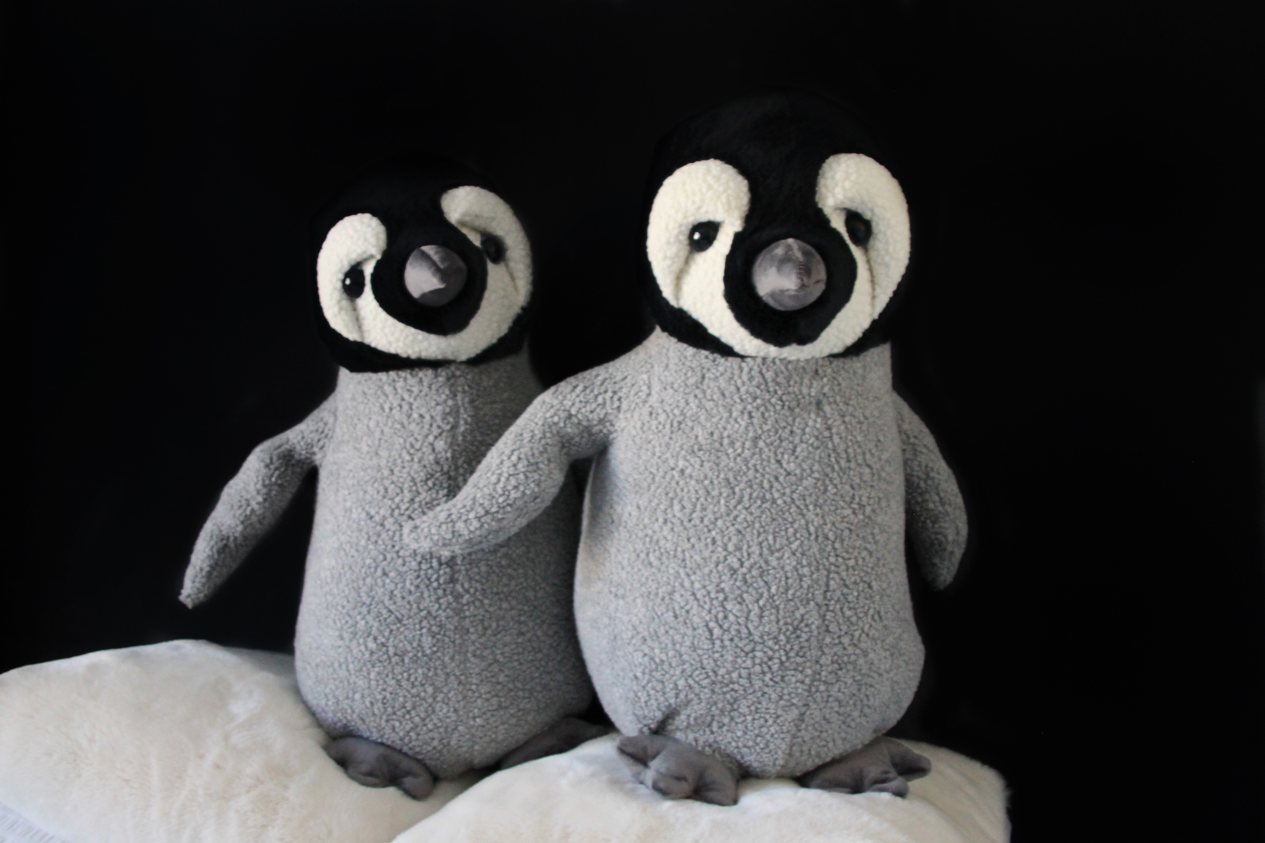 Emperor Baby Penguins