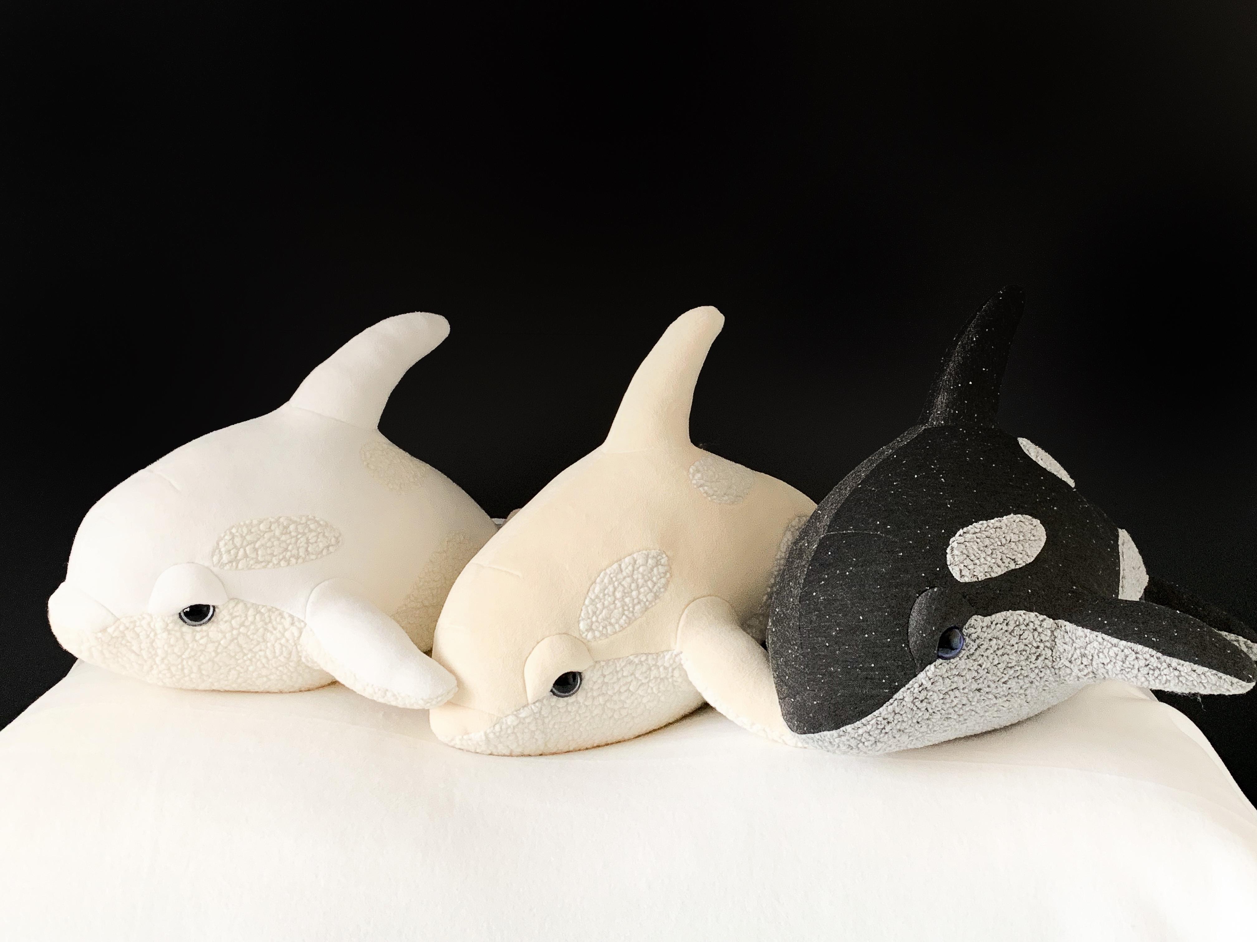 Babies Orca