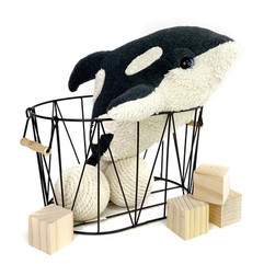 Little Baby Orca Plush