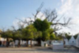 199_Kuthodaw Pagoda.JPG