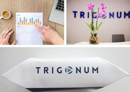 trigonum#.jpg