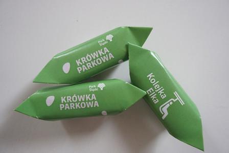 parkslaski#krowka#.JPG
