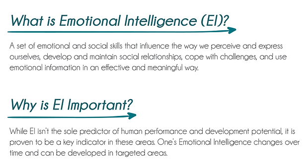 What is EQ-i.png