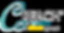 Logo.DropWhite.png