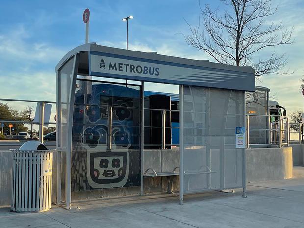 Norwood Transit Art - Plant of Happiness