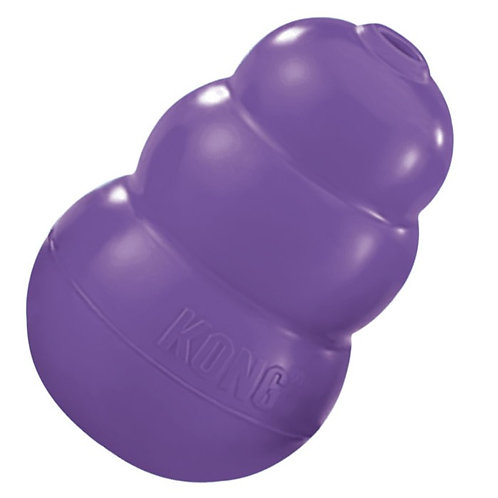 The Kong Toy for Senior Dogs