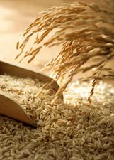 Nature's Way Brown Rice