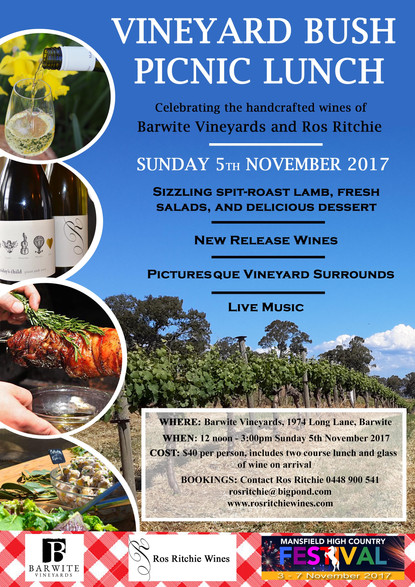 VINEYARD BUSH PICNIC 2017