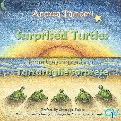 SURPRISED TURTLES (EN edition)