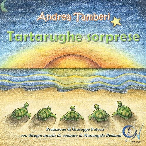 TARTARUGHE SORPRESE (2° edizione)