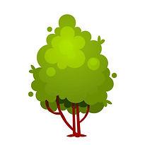 albero_ginepro-1024x1024-1.jpg