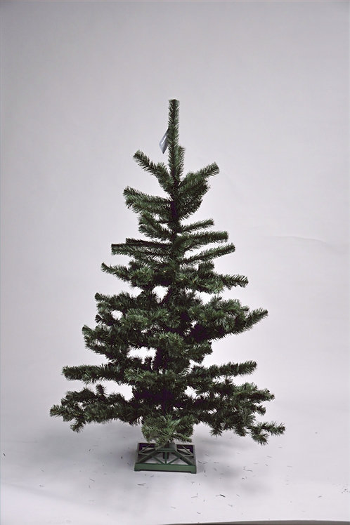 Standard Tree(s)