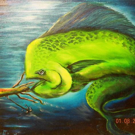 Mahi Mahi   Oil   16 x 20
