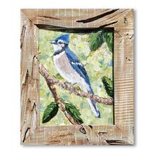 Blue Jay | Oil | 16 x 13
