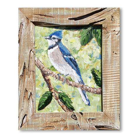 Blue Jay | Oil | 16 x 13