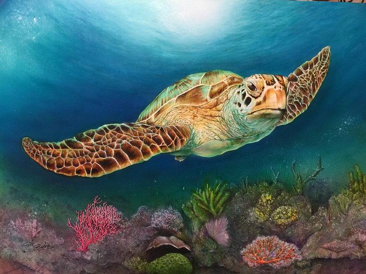 Sea Turtle II   Airbrush Acrylic   18 x 24